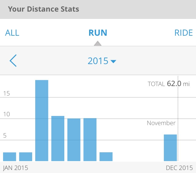 2015 running stats showing no activity in the months of August, September and November.